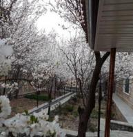1720 متر باغ ویلا در بافت شهری شهریار