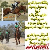 آموزش سوارکاری در کرج و تهران 09378297778
