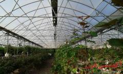 هیتر باغی و گلخانه ای گرماتاب
