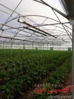 بخاری سقفی گلخانه